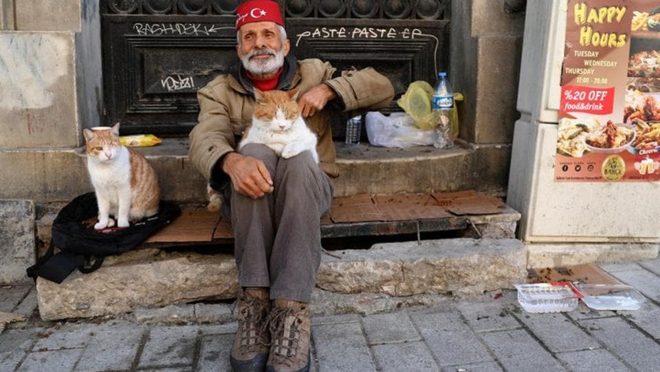 Necati, who makes his living collecting paper for recycling, steams chicken every morning that he hangs from the side of his cart. As he wends his way through Istanbul, he feeds strays. (Goran Tomasevic / REUTERS)