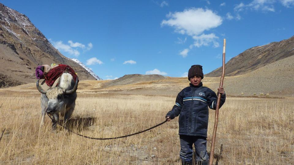 An Afghan Wakhi nomad child stands with his yak in the Wakhan Corridor in Afghanistan.