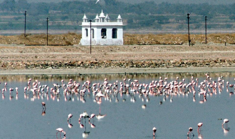 Located about 60 km from Jaipur, the Sambhar Lake, also known as the 'salt lake of Rajasthan', is the largest inland salt lake in India.