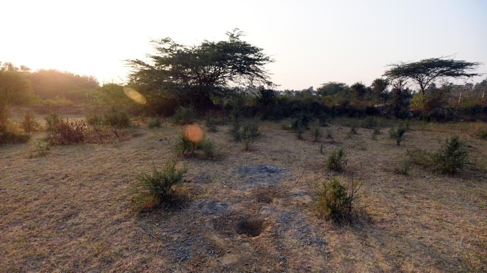 A view of a part of the Delhi government's land at Asola farms in Chattarpur.
