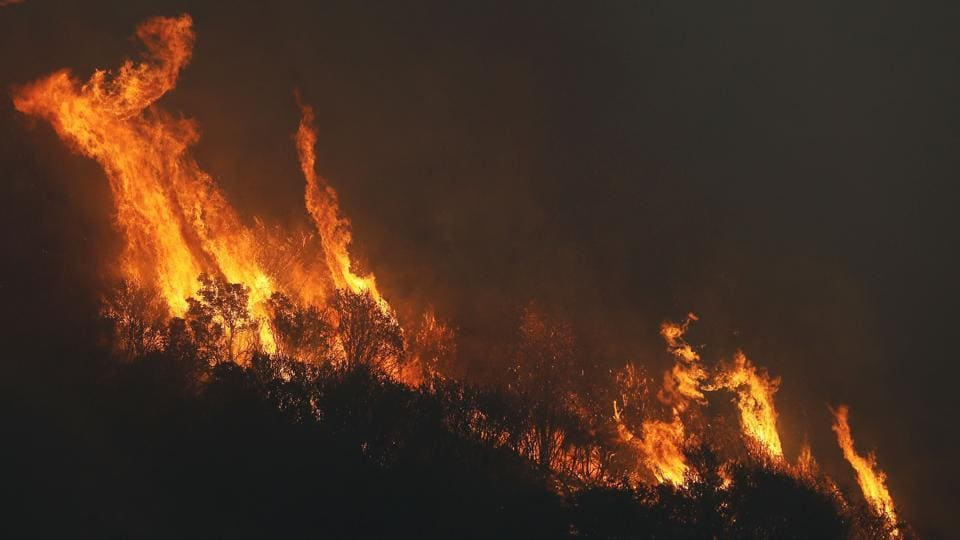 Experts believe the threat of forest fires is increasing as the soil is unable to retain moisture, with a warming climate.