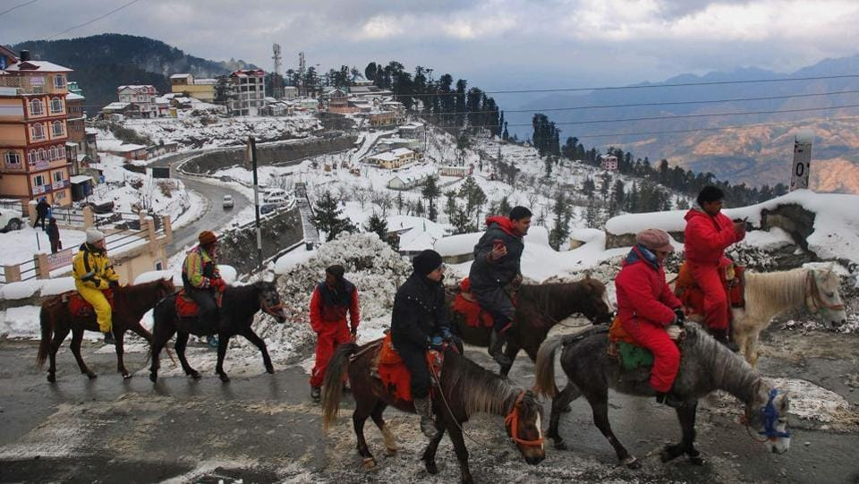 Tourists take pony rides in Kufri after fresh snowfall. Crowds of happy tourists rushed out of their hotels to witness the snowfall.  (PTI)