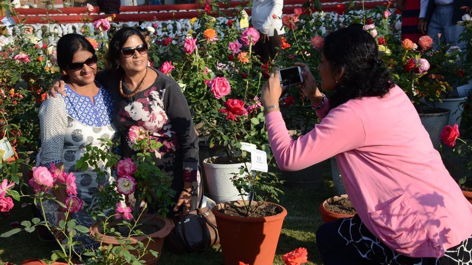 Pune,101st,roses