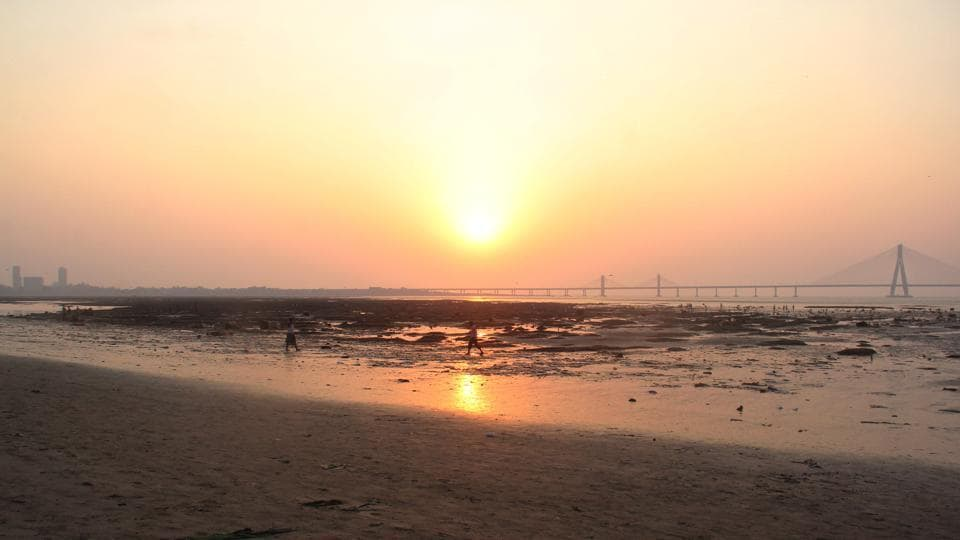 The most eroded coastline in Mumbai is Dadar-Shivaji Park beach.