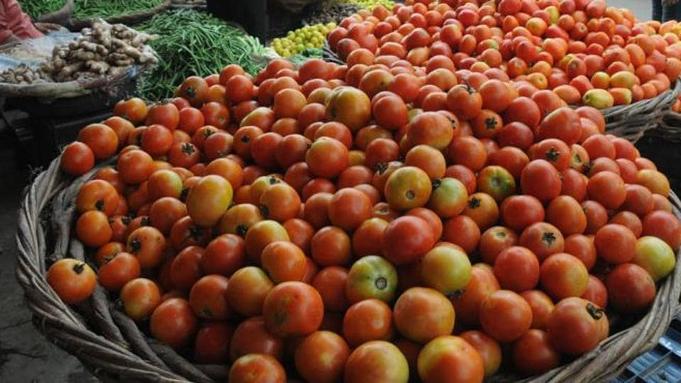 Farmers' organisations have demanded that MP government take steps to protect the interests of tomato-producer farmers.