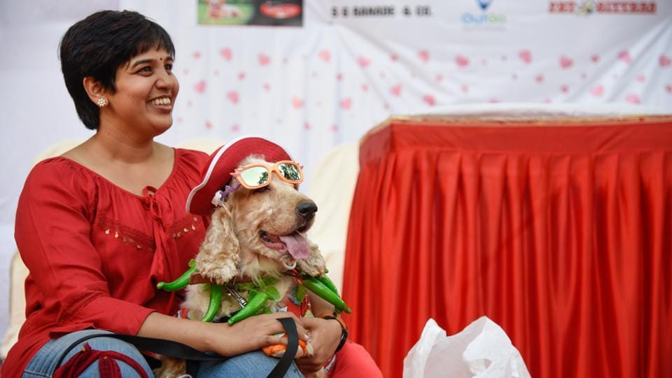 Pet dogs and their owners had a very lively evening on Sunday at the 'Fun fair with paws and tails', an event organised by Lokbiradari Prakalpa at Bhartiya Vidyabhavan, Paranjape Vidyamandir, Kothrud.   (Sanket Wankhade/HT PHOTO)