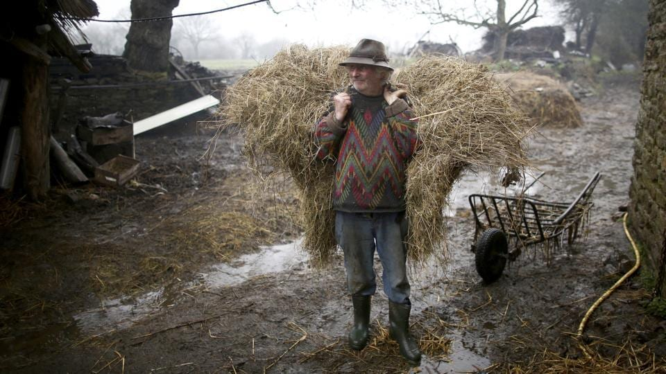French farmer Jean-Bernard Huon, 70, carries hay at his farm in Riec-sur-Belon, France. When farm machinery revolutionised French agriculture in the years after World War Two, a young Jean-Bernard Huon turned his back on the new technology. (Stephane Mahe / REUTERS)