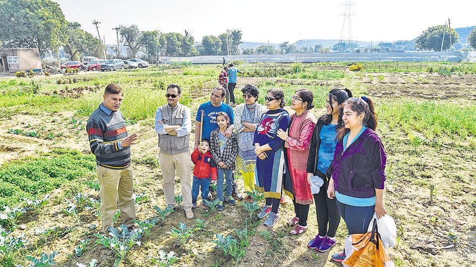 farming,organic farming,gurgaon farming