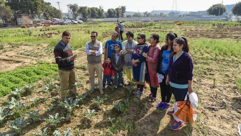 "An increasing number of professionals in Delhi and NCR are renting agricultural land for organic farming.  ""Twenty-eight families from Delhi and NCR have leased agriculture land from us near Palwal, a one-and-a-half-hour drive from Delhi,"" says Deepak Gupta, co-founder, Organic Maati, which helps them set up organic farms. (Burhaan Kinu / HT Photo)"