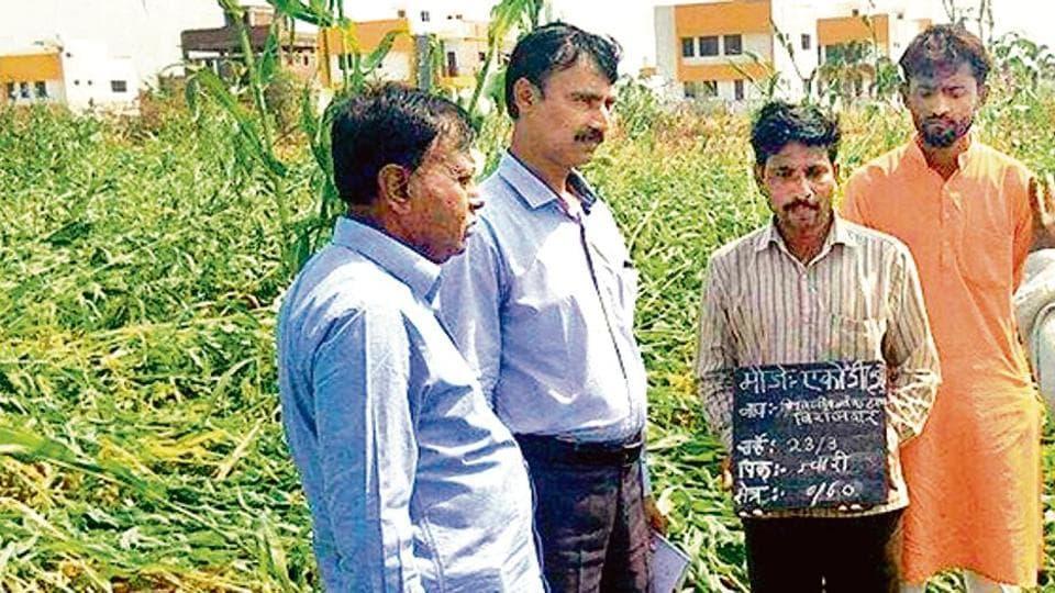 Maharashtra farmers,Maharashtra,Osmanabad farmers