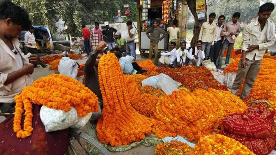 Pune,India,floriculture