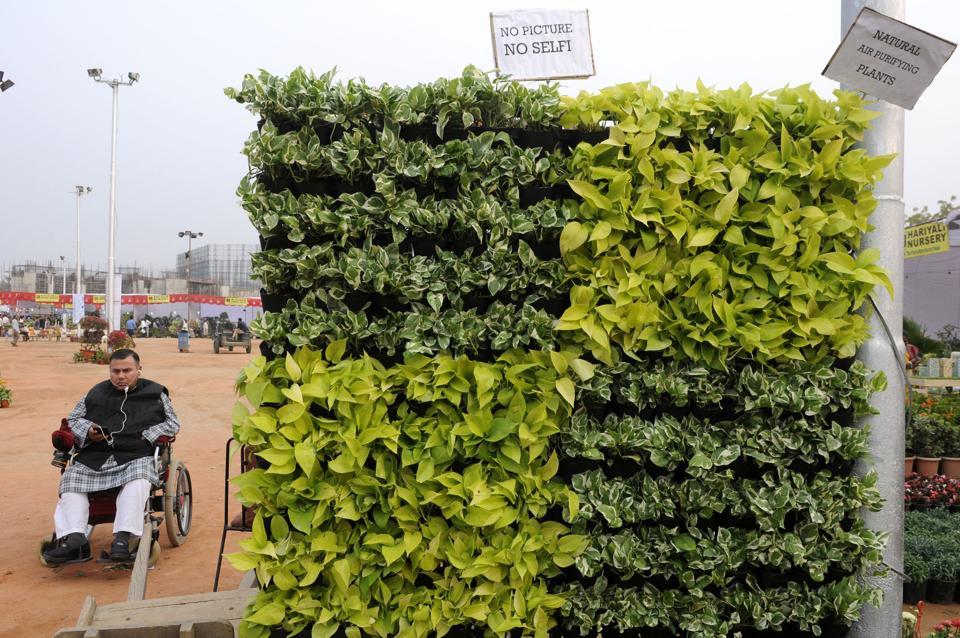 Noida,Noida news,Noida flower show
