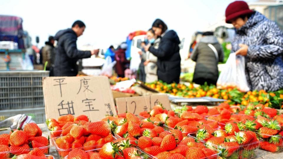People buying fruits at a market in Qingdao in China's eastern Shandong province. China currently consumes 40% of the world's fruit and vegetables, indicating the growing trend of vegetarianism in the world's most populous country.