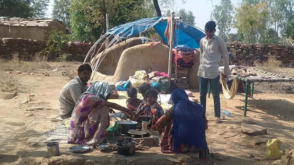 Madari,Animals,Rajasthan news