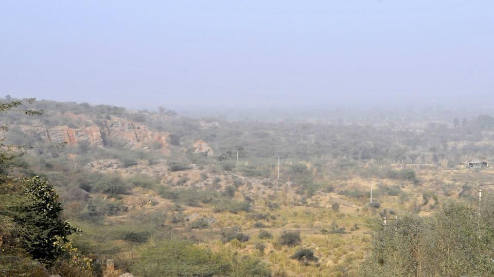 gurgaon forest,aravalli,haryana