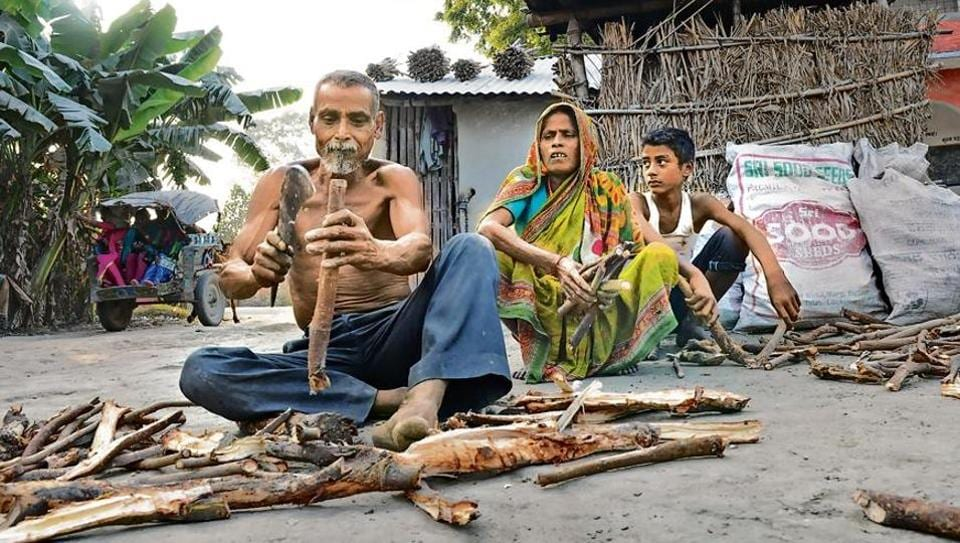 Bihar: Hindu refugees from East Pakistan want land, living, identity