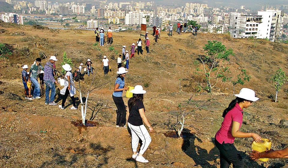For the past 11 years, Dr Garudkar Vasundhara Abhiyan is working for biodiversity conservation and restoration of Baner hill with group meetings on Sundays for two hours. The group has planted more than 11,000 native trees so far.