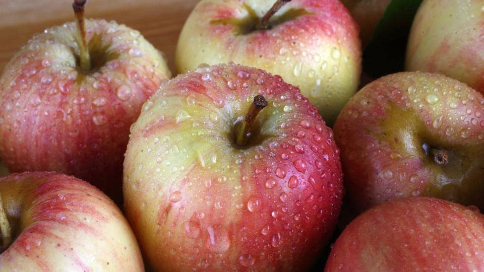 The newly rediscovered apples include the Shackleford, Saxon Priest, Kittageskee, Ewalt and McAffee varietals.