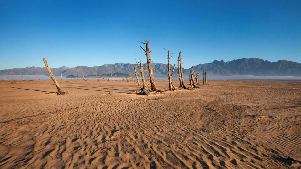 This file photo taken on May 10, 2017 shows bare sand and dried tree trunks standing out at Theewaterskloof Dam, which has less than 20 percent of it's water capacity, near Villiersdorp, about 108km from Cape Town. The last three years were the hottest on record, the United Nations weather agency said on January 18, 2018, citing fresh global data underscoring the dramatic warming of the planet.