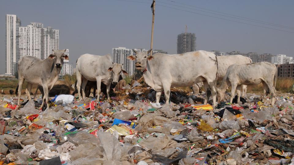 Ecogreen,Municipal Corporation of Gurugram,Municipal Corporation of Gurgaon