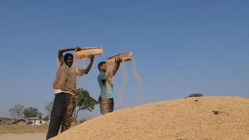Jharkhand,Paddy Procurement,Saryu Roy