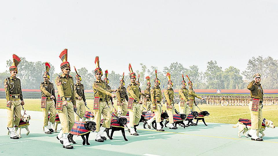 The dog squad, which comes under the Delhi Police crime branch, has a total of 65 canines — four cocker spaniels and 61 Labrador retrievers.