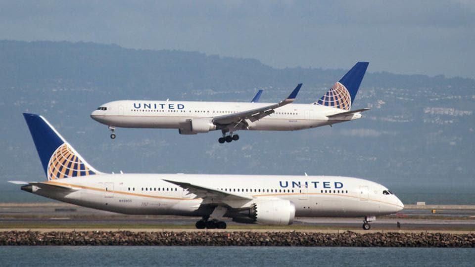United Airlines,Dog dies,Pet in flight