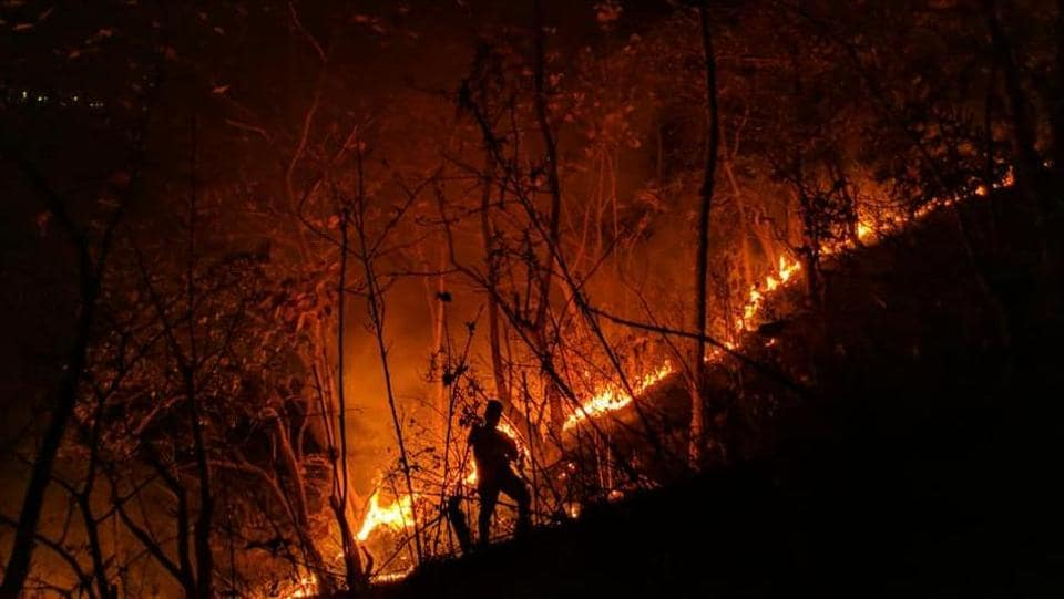 On Tuesday, HT had reported that the forest department caught an offender illegally lighting a fire within the protected forest area of Yeoor.