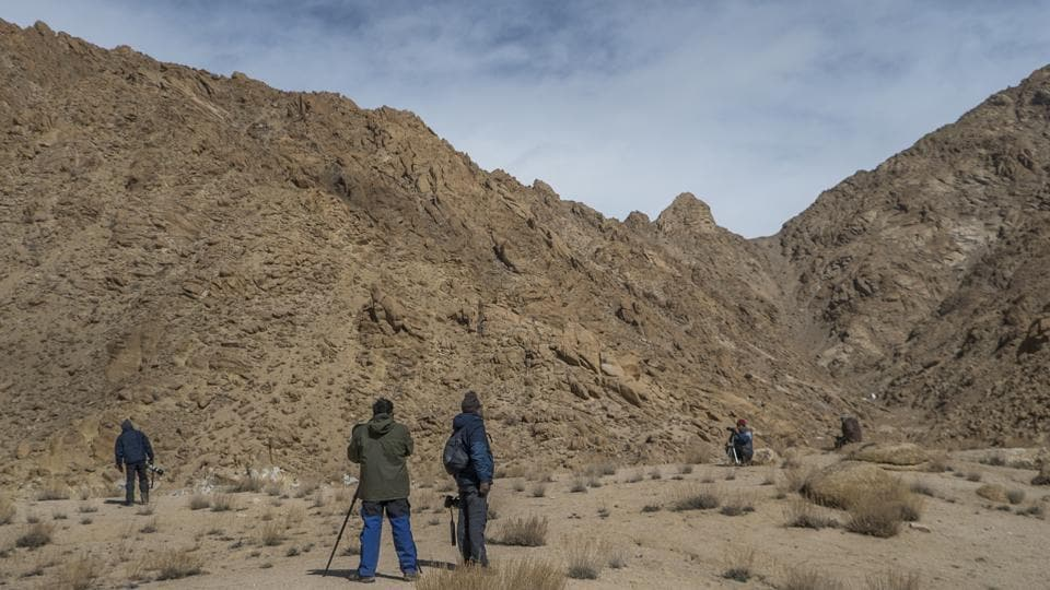 The scenic terrain of Ulley valley attracts several photographs and spotters each year. Seen here are a few of them, waiting for their chance to spot the snow leopard.The number of snow leopards in the Ladakh region has been estimated at 300-400.  (Pratik Chorge / HT Photo)