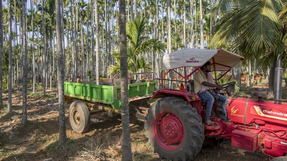 A farmer drives a Mahindra 475 DI tractor, manufactured by Mahindra & Mahindra Ltd., through an areca nut farm in the village of Kuragunda in Karnataka on March 8, 2018. (Prashanth Vishwanathan / Bloomberg)