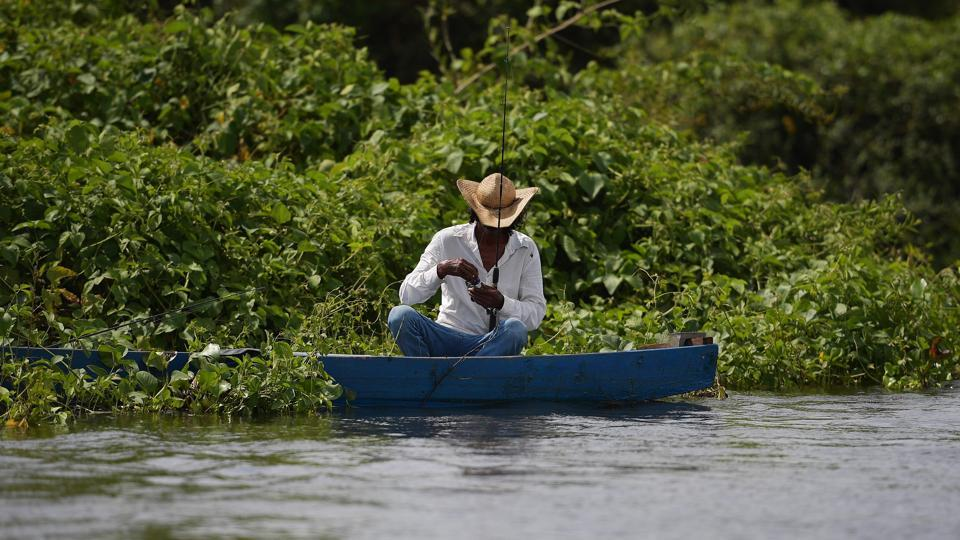"A fisherman prepares his fishing reel at the wetlands in Mato Grosso state, Brazil. Local cowboys, called ""pantaneiros,"" move their herds in rhythm with the movement of the floods. Freitas said ranchers have had a presence for more than 200 years without causing undue impact. The problem was the arrival in recent decades of intensive agriculture, reducing the topsoil and muddying the streams. (Carl De Souza / AFP)"