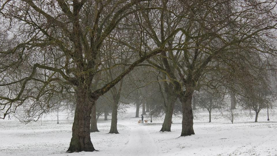 Snow covered Primrose Hill park in London on March 3.