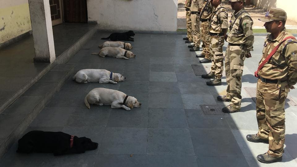 Central Industrial Security Force,CISF,dog squad