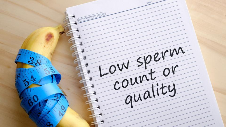 Low sperm count,Sperm study,Study on sperm