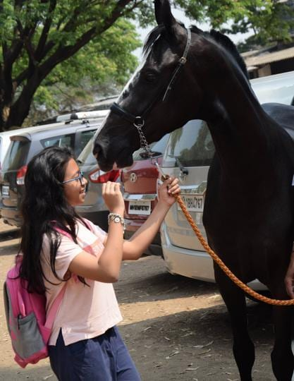 A visitor seen with a horse at the Marwari breed show organised by the Indigenous horse owners association  at Talegaon in Pune.   (HT PHOTO )