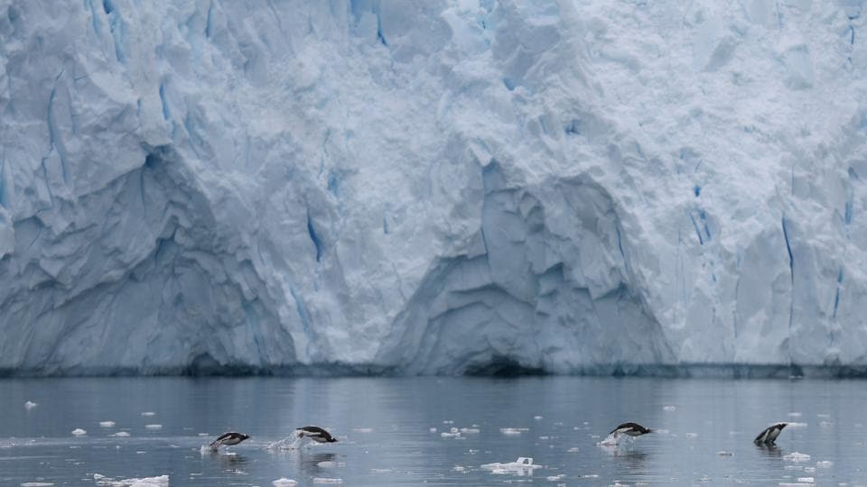 Penguins swim next to a glacier in Neko Harbour. Antarctica itself is currently protected under the Antarctic Treaty, but there is still scope for abuse of waters around Antarctica, and it is already dealing with issues that are happening elsewhere in the world, such as increasing CO2 levels, acidification of the oceans, and plastics. (Alexandre Meneghini / REUTERS)