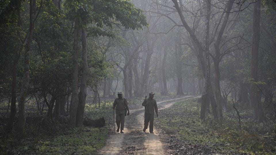 Forest officials on patrol during a rhino census at the Pobitora Wildlife Sanctuary in Assam. The rhino census is a regular exercise carried out every three years. While the last census of the one-horned rhinos at Pobitora was carried out in 2012, Kaziranga's last census in 2015 showed 2,401 rhinos in the national park. (Anupan Nath / AP)