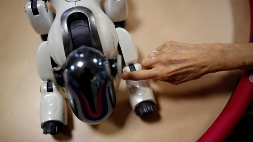 """Robots have the run of Tokyo's Shin-tomi nursing home, which uses 20 different models to care for its residents. Paro the furry seal cries softly while an elderly woman pets it. Pepper, a humanoid, waves while leading a group of senior citizens in exercises. The upright Tree guides a disabled man taking shaky steps, saying in a gentle feminine voice, """"right, left, well done!""""  (Kim Kyung-Hoon / REUTERS)"""