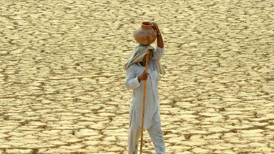 Food shortage,India,Climate change