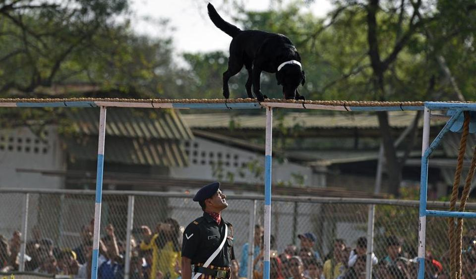 A dog show at the 124th Raising Day of Southern Command Military Tattoo event at Race course in Pune on March 31. (PRATHAM GOKHALE/HT PHOTO)