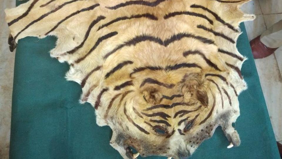 Mumbai,tiger skin,police