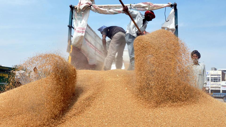Punjab,wheat,arhtiyas