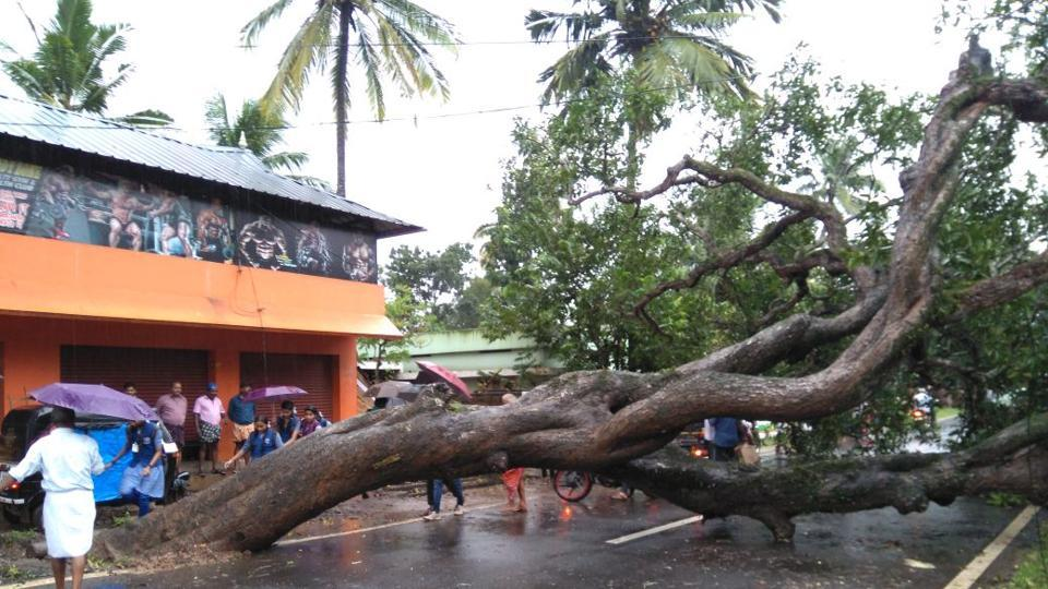 Cyclone Ockhi, which formed as a depression over southwest Bay of Bengal on November 29, 2017, intensified into a cyclone off the Kanyakumari coast in Tamil Nadu on November 30.
