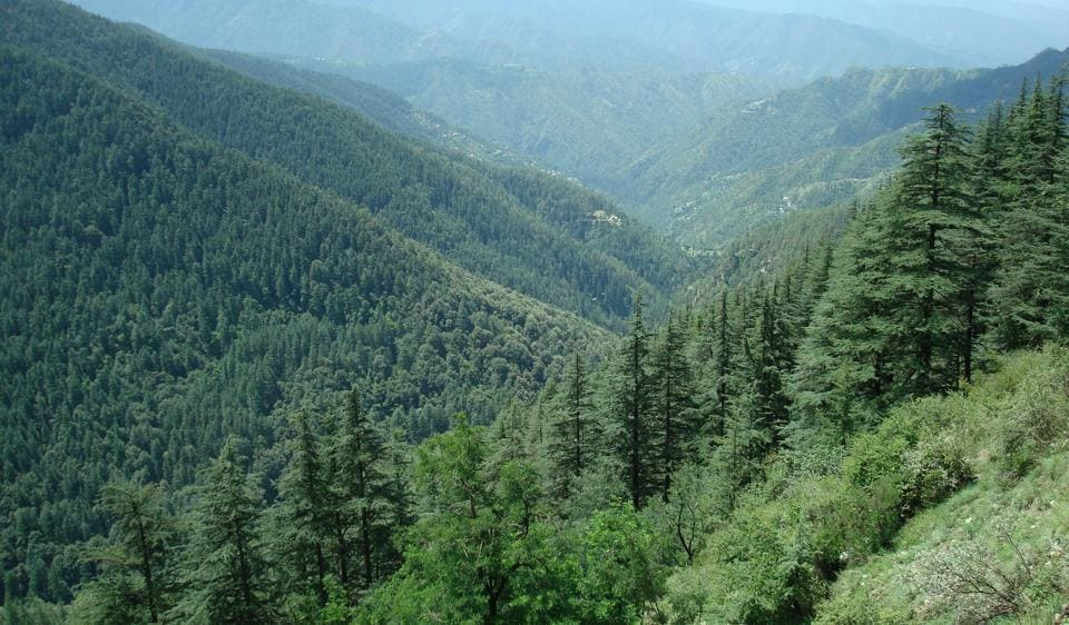 India's forest cover measures 7,08,27,300 hectare.