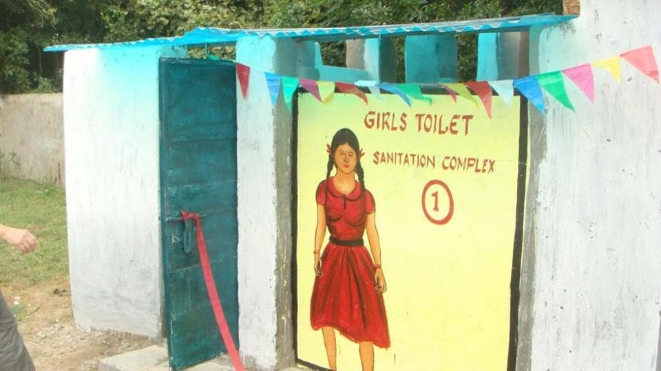 The types of toilets included pre-fabricated modular, mobile toilets, masonry toilets and Delhi urban art commission (DUAC) toilets