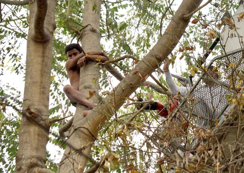 Every time the rescuers tried to reach him, the man, identified as Deepu, shifted his location and clung on to the tree.