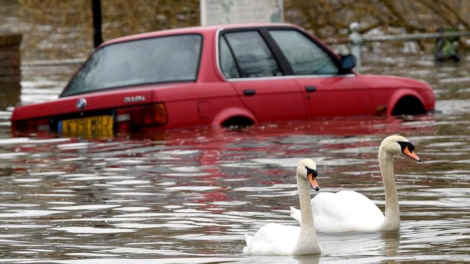 Swans swim past a car submerged under flood water on a residential street in Richmond, London, Britain. (Toby Melville / REUTERS)
