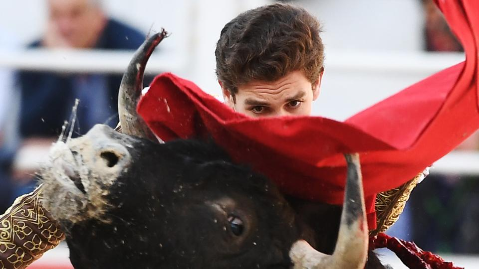 Spanish bullfighter Gines Marin perfoms a pass to a Spanish Jandilla bull during the Feria du Riz in Arles, southern France. (Boris Horvat / AFP)