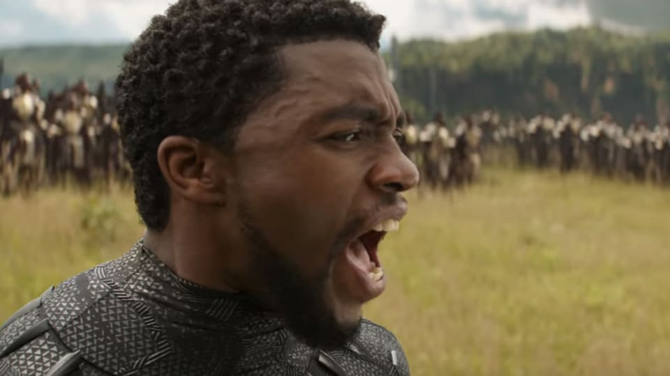 Black Panther's success at the box office has earned him a promotion.