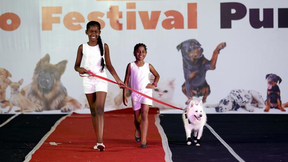 The PetYo festival was filled with fun and frolic as owners walked the ramp with their pets at Amanora Club House in Pune on April 8. (RAHUL RAUT/HT PHOTO)